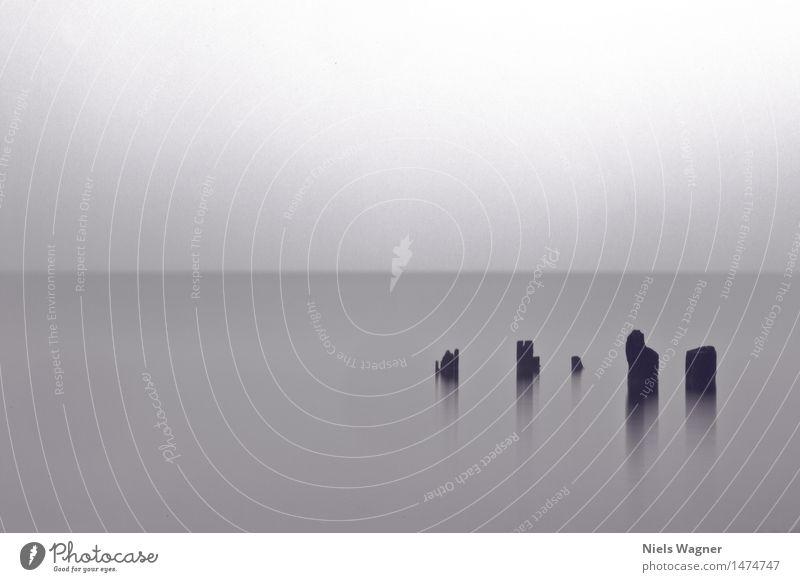 Nebel Natur Landschaft Wasser Horizont Frühling schlechtes Wetter Wellen Küste Bucht Ostsee Meer Romantik Tod kalt Schwarzweißfoto Gedeckte Farben Außenaufnahme