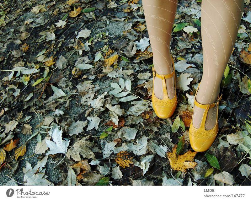 Passende Schuhe zum Herbst: € 19,90 Schnalle Blatt gelb grün Asphalt Straßenrand gelbe Schuhe Treppenabsatz Spaziergang Fuß Beine Wege & Pfade Herbstspaziergang