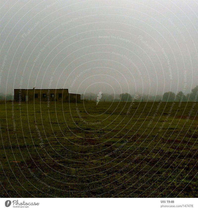 Der Nebel und das Nichts. alt ruhig Einsamkeit dunkel Herbst Wiese grau Landschaft Feld leer trist Ende geheimnisvoll verfallen Quadrat