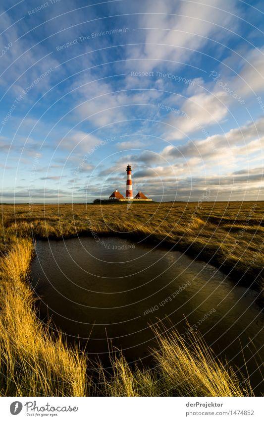 Leuchtturm Westerhever an der Nordsee im Winter mit kleinem See Ferien & Urlaub & Reisen Tourismus Ausflug Abenteuer Ferne Freiheit wandern Umwelt Natur