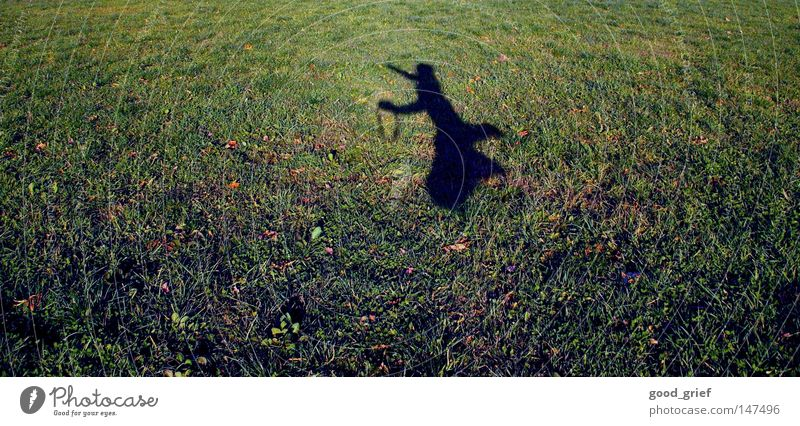 to cut a caper springen hüpfen Wiese Feld Mann Kind kindisch Gras Sonnenlicht Herbst Unschärfe Freude jumping around herumspringen Schatten Mensch Junge
