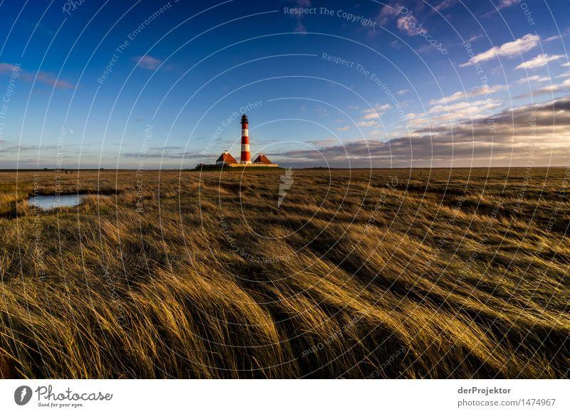 Westerhever Leuchtturm im Sonnenuntergang Ferien & Urlaub & Reisen Tourismus Ausflug Abenteuer Ferne Freiheit Sightseeing wandern Umwelt Natur Landschaft