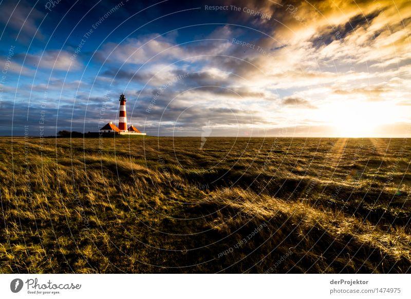 Himmelsteilung mit Leuchtturm Natur Ferien & Urlaub & Reisen Pflanze Landschaft Tier Ferne Winter Umwelt Wiese Küste Freiheit Tourismus Zufriedenheit Feld