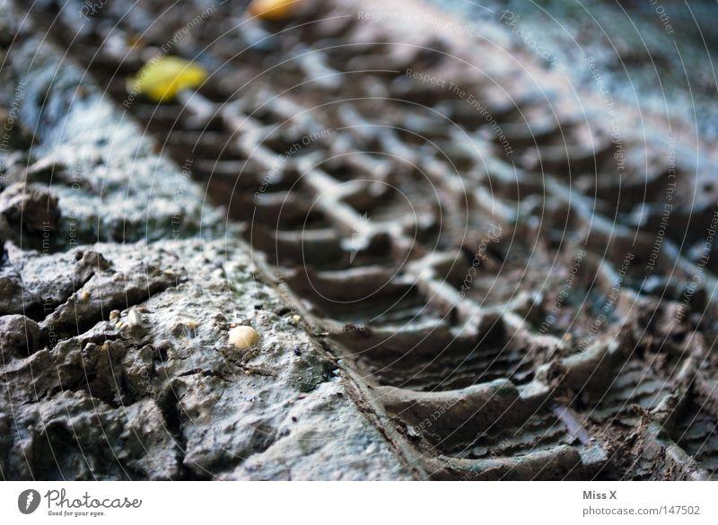 Track 2 Blatt Straße Herbst Wege & Pfade grau braun Erde dreckig Spuren Fußweg Reifenprofil Schlamm Reifenspuren steinig Abdruck matschig