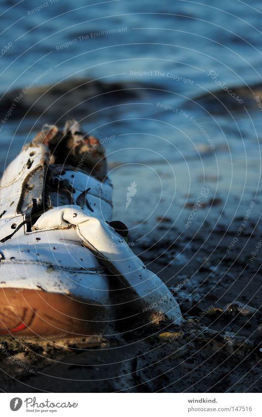 Strandgut Wasser alt Meer blau Winter Strand Einsamkeit kalt Herbst Sand Schuhe Wind Bekleidung Müll Vergänglichkeit Turnschuh