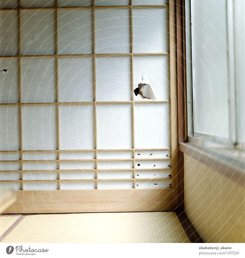 Luft Japan Tokyo Asiate Stimmungsbild Japanisch Japaner