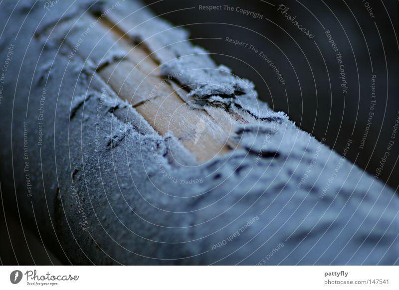 Fr0sty BaRk II Baumrinde Frost Raureif kalt Holz Baumstamm Herbst Winter Makroaufnahme Nahaufnahme Holzmehl Eis baumfällarbeiten hurt Schnee