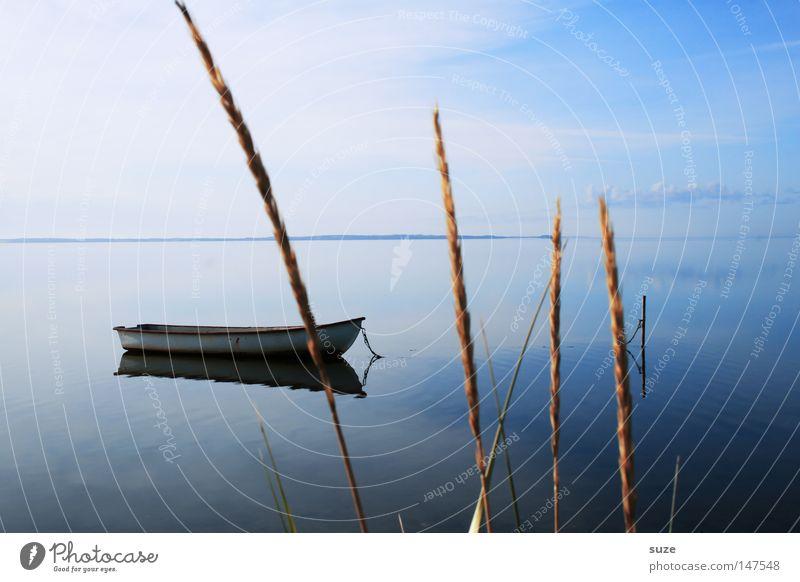 Klarheit Zufriedenheit Erholung ruhig Ferien & Urlaub & Reisen Umwelt Natur Landschaft Urelemente Luft Wasser Himmel Horizont Sommer Meer Ruderboot kalt blau