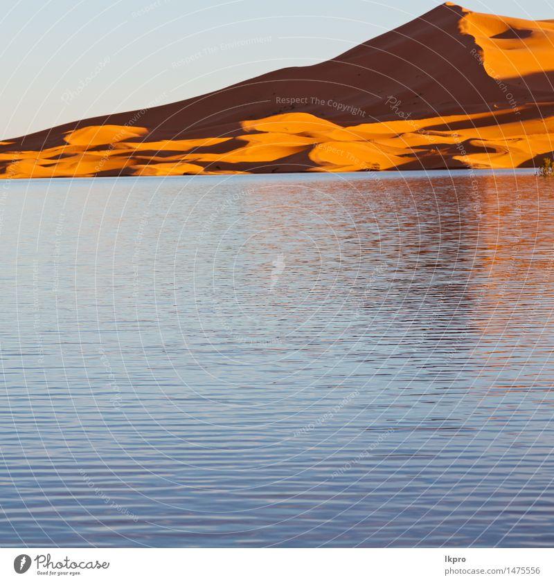 Sand Ferien & Urlaub & Reisen Abenteuer Safari Sonne Natur Landschaft Wärme Dürre See heiß gelb rot Einsamkeit Afrika Afrikanisch arabisch trocken Hintergrund