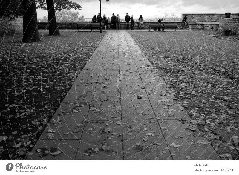 Weg zum Ausblick Mensch Himmel Baum Blatt Wolken Ferne Herbst Menschengruppe Stein Mauer Wege & Pfade Aussicht stehen feucht Fußweg Symmetrie