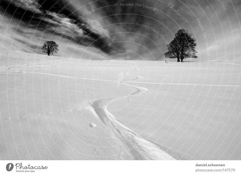 Snowboardweihnachtskarte Himmel Natur Ferien & Urlaub & Reisen weiß Baum Einsamkeit Wolken Winter kalt Berge u. Gebirge Schnee Hintergrundbild Deutschland Horizont Wetter Freizeit & Hobby