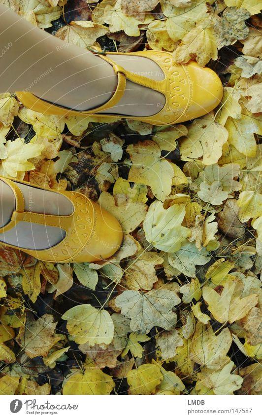 gelbes Laub Schuhe Schnalle Herbst Blatt grün Asphalt Straßenrand gelbe Schuhe Treppenabsatz Spaziergang Fuß Beine Wege & Pfade Herbstspaziergang zarte Farben