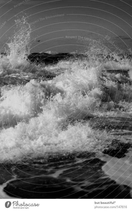 dampfende gischt° schön Meer Küste Kraft Nordsee Brandung Sylt gewaltig