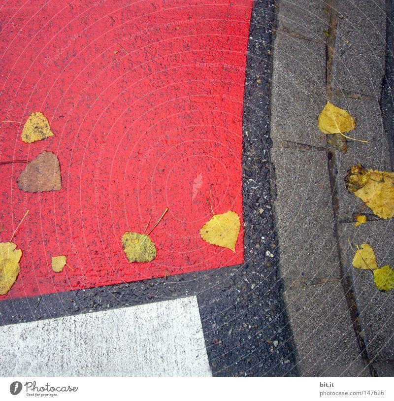 PATCHWORK Blatt grau Grauwert weiß Herbst trist Streifen Linie Asphalt rot Quadrat Straße kariert