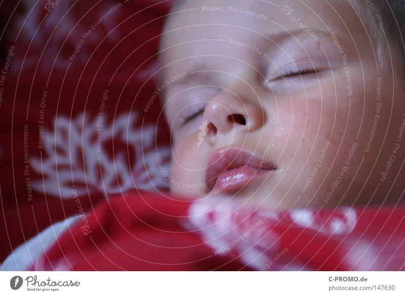 Junge schläft friedlich im Bett Kind schlafen träumen Mittagsschlaf Kindheit Unbeschwertheit niedlich klein Kleinkind Mund geschlossene Augen Erholung Nacht