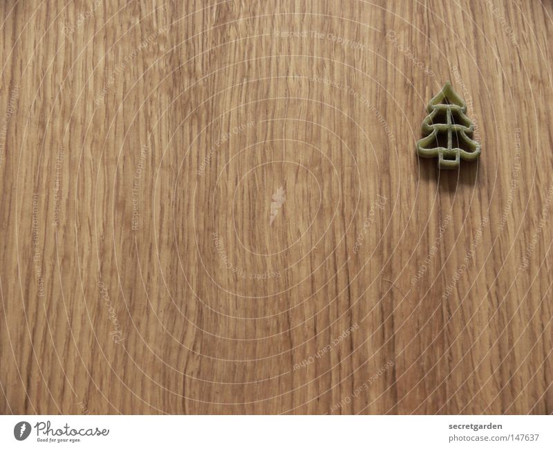 den wald vor lauter bäumen nicht sehen. Weihnachten & Advent grün schön Baum Einsamkeit Ernährung Schnee Holz Ordnung authentisch Schriftzeichen Tisch Dekoration & Verzierung Möbel niedlich Buchstaben