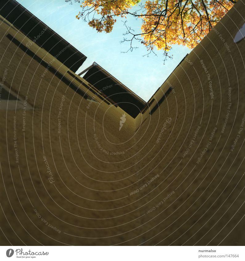 Y Himmel blau Haus gelb Fenster Architektur Wohnung dreckig Fassade Treppe Ecke Dach Buchstaben Müll Jahreszeiten