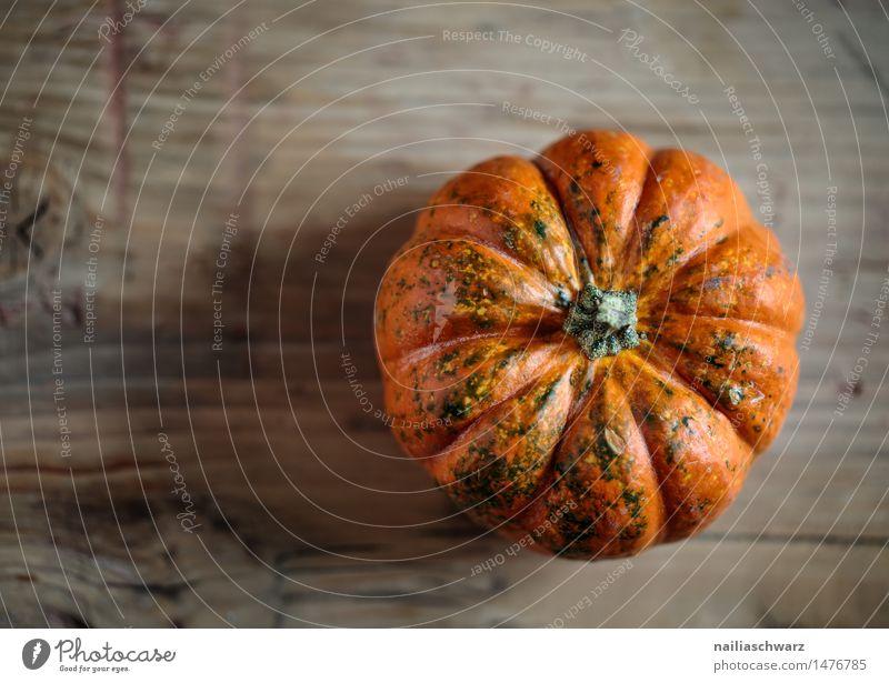 Kuerbis Natur schön Farbe Herbst natürlich Gesundheit klein Lebensmittel braun orange frisch genießen Kochen & Garen & Backen Küche Landwirtschaft Gemüse