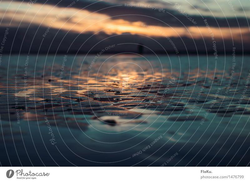 Farben im Wattenmeer Ferien & Urlaub & Reisen Strand Meer Umwelt Natur Urelemente Erde Sand Wasser Wolken Sonne Sonnenaufgang Sonnenuntergang Sonnenlicht