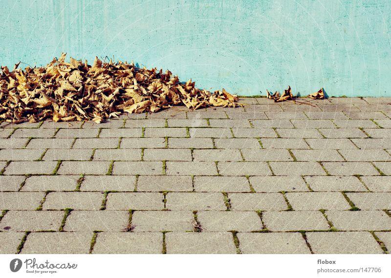 Weimarer Laub Blatt Herbstlaub mehrfarbig Oktober November September gelb Herbstfärbung Ahornblatt Baum Haufen Anhäufung Hintergrundbild Jahreszeiten pflastern