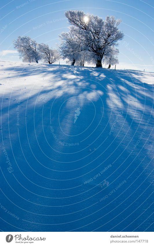 neue Weihnachtskarte 4 Himmel Natur blau weiß Baum Ferien & Urlaub & Reisen Sonne Winter Einsamkeit kalt Schnee Berge u. Gebirge Horizont Deutschland Wetter