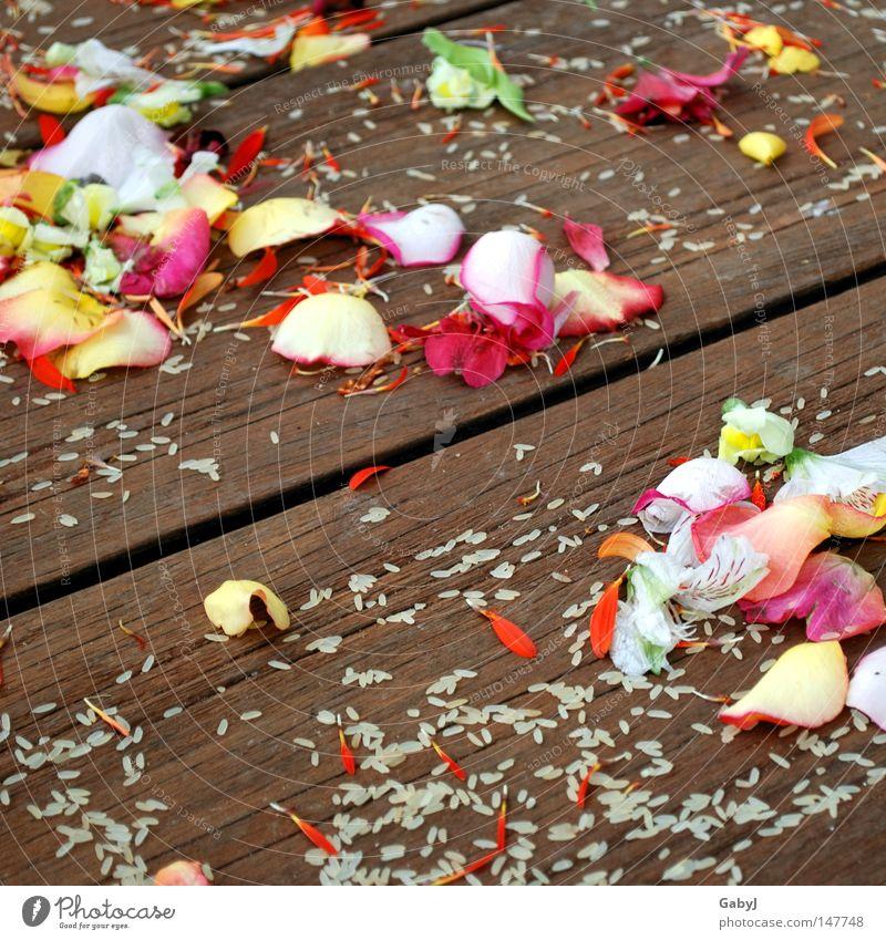 Hochzeitsblütenträume Blume Rose Glück Religion & Glaube Treppe Erfolg Vergänglichkeit Trennung Holzbrett werfen Tradition welk Rest Blütenblatt Braut Reis