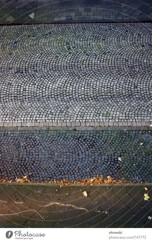 Straßenaufsicht Muster Vogelperspektive Herbst Blatt Verkehrswege Linie hoch oben blau grau Bürgersteig Seitenstreifen Kopfsteinpflaster leer graphisch