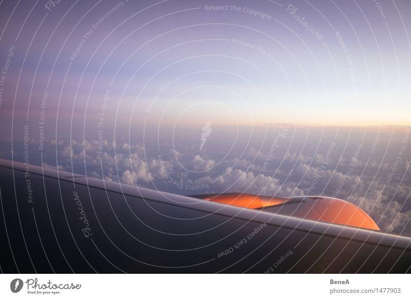 Über den Wolken Himmel Ferien & Urlaub & Reisen Sonne Erholung Ferne Freiheit fliegen Horizont Tourismus Luftverkehr Flügel Flugzeug Unendlichkeit Skyline