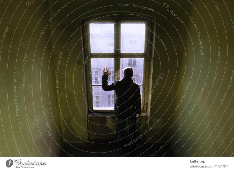 nachbarsjunge Mensch Mann Stadt Hand Haus Fenster Berge u. Gebirge Architektur Gefühle Schnee fliegen See Linie Fassade springen Luft