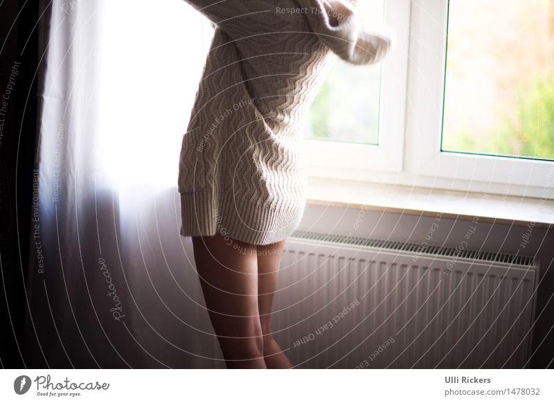 anziehend Wohnung Raum feminin Haut Gesäß Beine 1 Mensch 18-30 Jahre Jugendliche Erwachsene Fenster Mode Pullover Stoff Erholung Häusliches Leben elegant