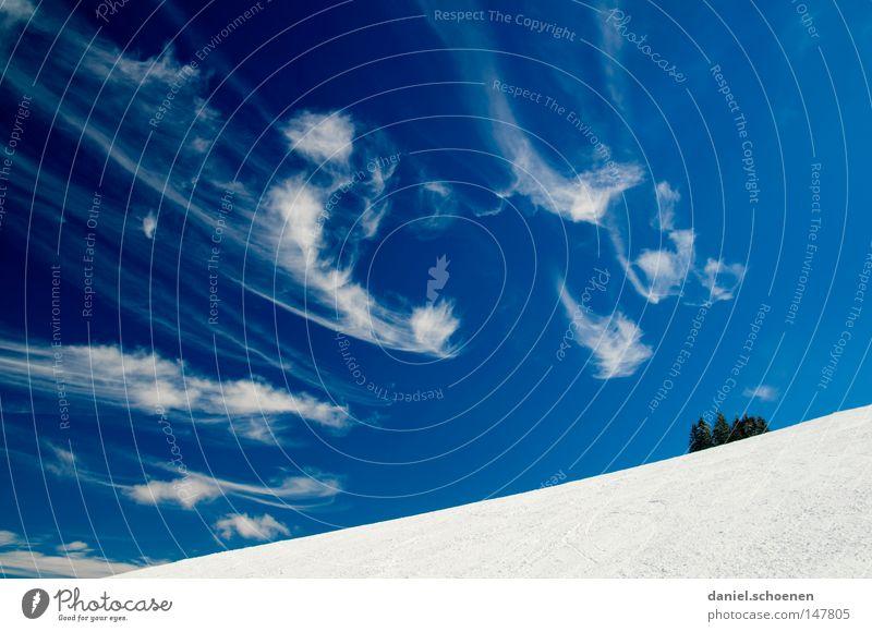 35 Grad, wolkenlos ! Himmel Natur Ferien & Urlaub & Reisen blau weiß Baum Einsamkeit Wolken Winter kalt Berge u. Gebirge Schnee Hintergrundbild Deutschland