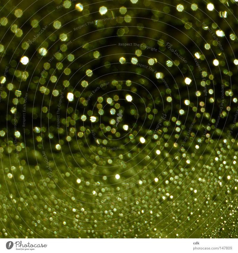 Das Wesen der Dinge Wassertropfen rund eckig organisch klein zart stark ähnlich glänzend schimmern sprühen rieseln fließen strömen Schweben verbinden