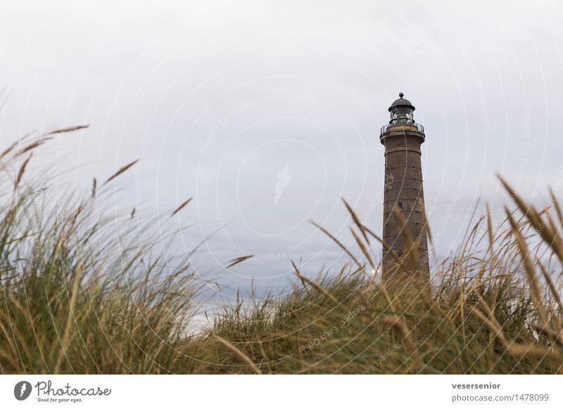 Leuchtturm Skagen Fyr Ferien & Urlaub & Reisen alt Landschaft ruhig Gefühle Senior Gras Küste leuchten hoch einzigartig Vergänglichkeit rund Schutz Sicherheit