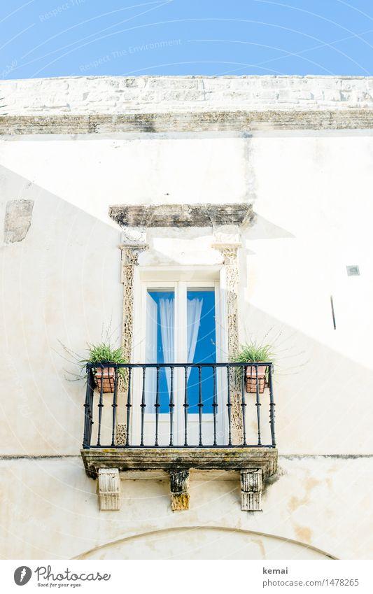 Adrett Gardine Wolkenloser Himmel Sommer Schönes Wetter Topfpflanze Monopoli Apulien Italien Kleinstadt Altstadt Haus Gebäude Mauer Wand Fassade Balkon Fenster