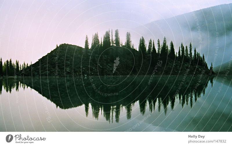 Inseln im Nebel Himmel Wasser Baum ruhig schwarz dunkel kalt See Nebel Insel Klarheit Spiegel Neigung Kanada unheimlich Nationalpark