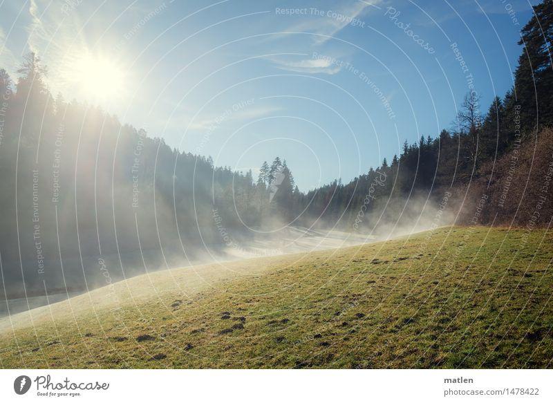 Zinsbachtal Natur Landschaft Pflanze Himmel Wolkenloser Himmel Horizont Sonne Sonnenlicht Winter Klimawandel Wetter Schönes Wetter Nebel Gras Wiese Wald Hügel