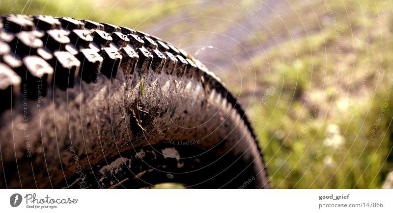 meine letzte radtour Felge Aluminium Gummi Gras Fahrrad Ferien & Urlaub & Reisen Freizeit & Hobby fahren Halm braun grün schwarz Silhouette Schlamm 2 Herbst