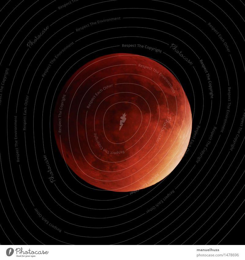 Superblutmond Nachthimmel Mond Mondfinsternis Vollmond groß rot Wissenschaften Astronomie Raumfahrt dunkel Teleskop Zoomeffekt Detailaufnahme Weltall