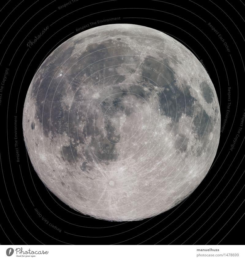 Vollmond Nachthimmel Mond dick gigantisch groß rund Mondlandschaft Krater Mare Mineralien Oberflächenstruktur Wissenschaften Astronomie Raumfahrt Teleskop