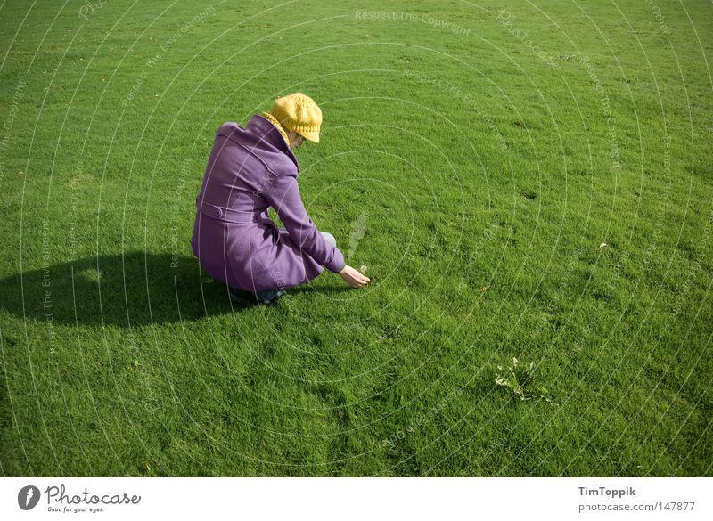 Pflück! Frau Rasen Sportrasen Wiese grün grasgrün Gras Mütze Mantel Baseballmütze violett Park gelb Gegenteil Kontrast Pflanze Löwenzahn Natur Garten Frieden