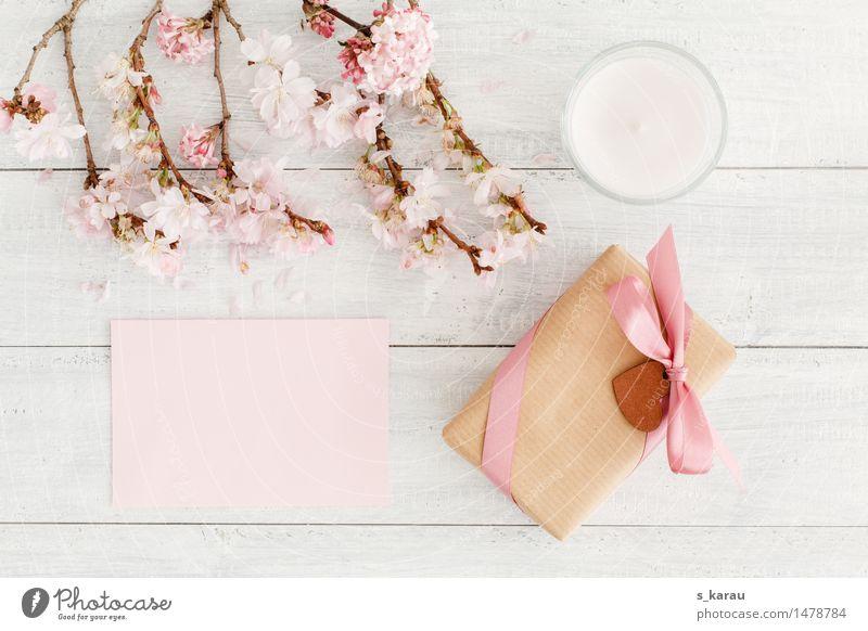 Frühlingsgruß Blüte Hintergrundbild Holz hell Freundschaft rosa Herz Geschenk Zeichen Romantik Jahreszeiten Kerze Postkarte Partnerschaft Valentinstag