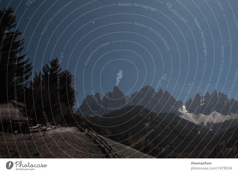 Winternacht Ferne Schnee Winterurlaub Berge u. Gebirge wandern Natur Landschaft Wolkenloser Himmel Nachthimmel Stern Horizont Vollmond Schönes Wetter Eis Frost