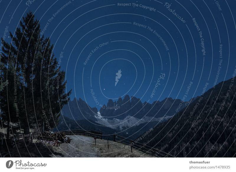 Mondnacht Ferne Winter Berge u. Gebirge wandern Umwelt Natur Landschaft Wolkenloser Himmel Nachthimmel Stern Horizont Vollmond schlechtes Wetter Eis Frost Baum