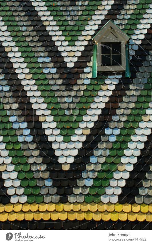 hallo wien weiß grün schwarz gelb Farbe Wien Kirche Dach Kot Denkmal Wahrzeichen Geometrie Taube Dom Dreieck