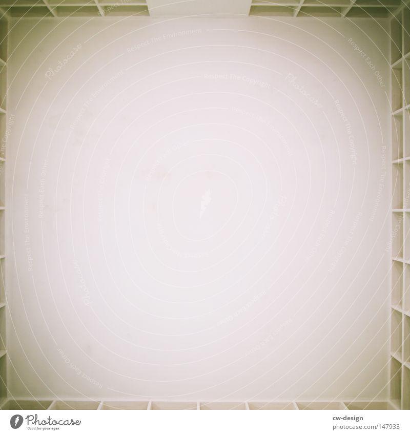 DIE ERSCHEINUNG AM RANDE trashig weiß Müll Sauberkeit Schatten Erkenntnis erleuchten Fächer Regal Bücherregal Platz Freiraum Raum Froschperspektive