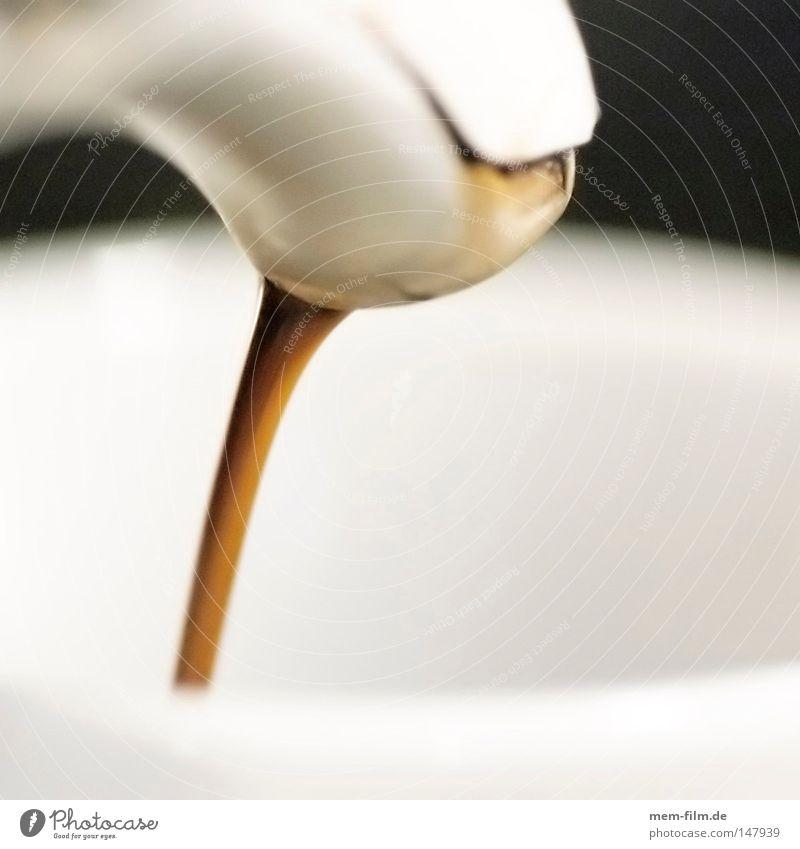 coffee in! Café Kaffeepause kochen & garen erhitzt Physik genießen Bar heiß braun Ernährung Theke Gastronomie Wärme Koffein Rauschmittel abgebrüht Energie