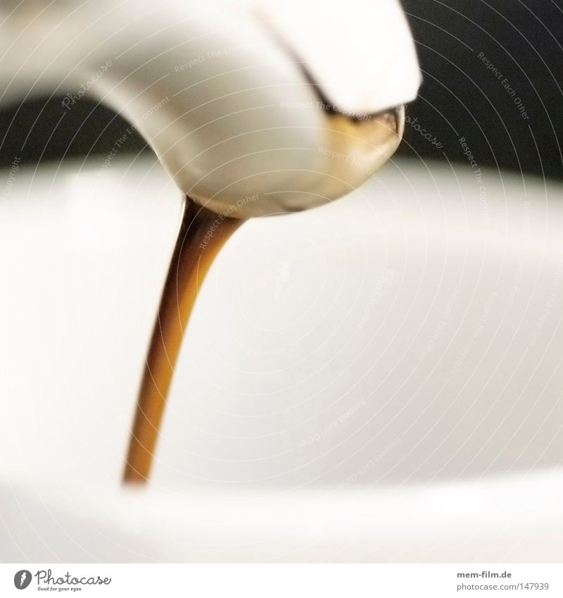 coffee in! Wärme braun Energie Ernährung Elektrizität Kaffee Kochen & Garen & Backen Italien Physik genießen Bar heiß Gastronomie Café Rauschmittel Theke