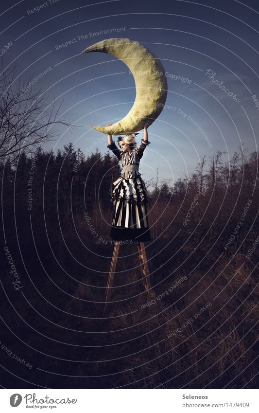 Mondlicht Mensch feminin Frau Erwachsene 1 30-45 Jahre Theaterschauspiel Subkultur Rockabilly Umwelt Natur Himmel Herbst Feld Leiter groß Pappmache aufgehen