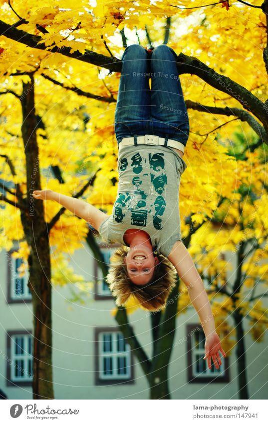 baum(eln) Herbst herbstlich Blatt gold Schatten träumen Tagtraum baumeln hängen Klettern Freude Jugendliche hängen lassen Erholung Laubbaum Baum Frau frei