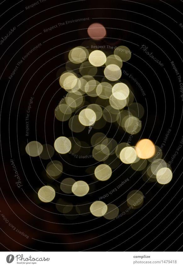 Kurzsichtige Weihnachten Weihnachten & Advent Pflanze Baum Schnee Feste & Feiern Party leuchten Dekoration & Verzierung Kerze Silvester u. Neujahr Weihnachtsbaum schimmern Mitgefühl Sehvermögen Gastfreundschaft Lichteffekt